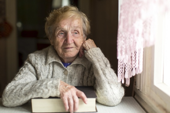 An elderly woman with a book sitting near the window.
